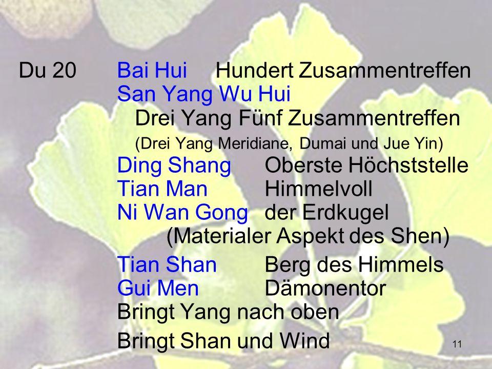 11 Du 20Bai HuiHundert Zusammentreffen San Yang Wu Hui Drei Yang Fünf Zusammentreffen (Drei Yang Meridiane, Dumai und Jue Yin) Ding ShangOberste Höchs