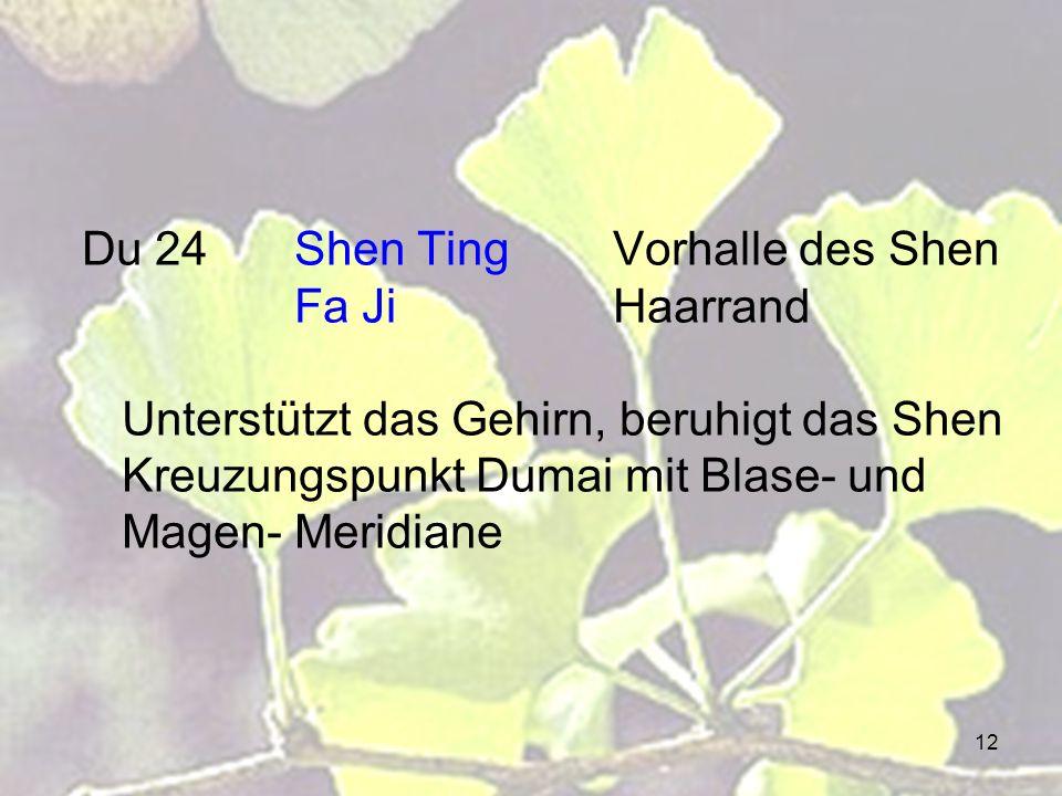 12 Du 24Shen TingVorhalle des Shen Fa JiHaarrand Unterstützt das Gehirn, beruhigt das Shen Kreuzungspunkt Dumai mit Blase- und Magen- Meridiane