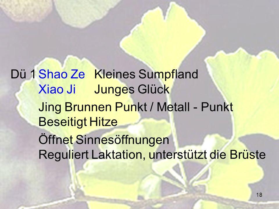 18 Dü 1Shao ZeKleines Sumpfland Xiao JiJunges Glück Jing Brunnen Punkt / Metall - Punkt Beseitigt Hitze Öffnet Sinnesöffnungen Reguliert Laktation, un