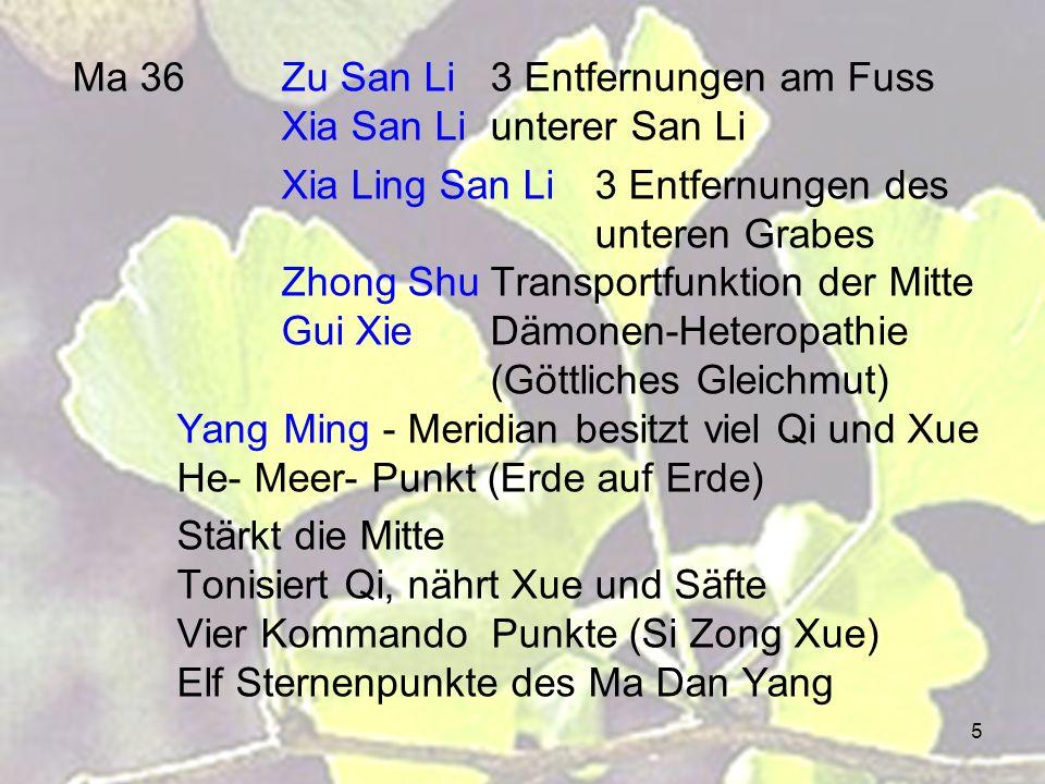 16 Mi 1Yin Bai Verborgenes Weiss Gui LeiDämonenfestung (Sun Si Miao Dämonenpunkt) Jing Brunnen Punkt / Holz - Punkt Stoppt Blutungen Milz Qi stärken, sammelt das Blut Shen Beruhigen