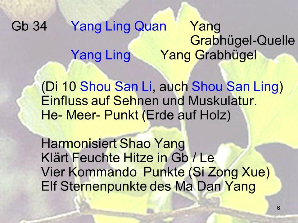 6 Gb 34Yang Ling QuanYang Grabhügel-Quelle Yang LingYang Grabhügel (Di 10 Shou San Li, auch Shou San Ling) Einfluss auf Sehnen und Muskulatur. He- Mee