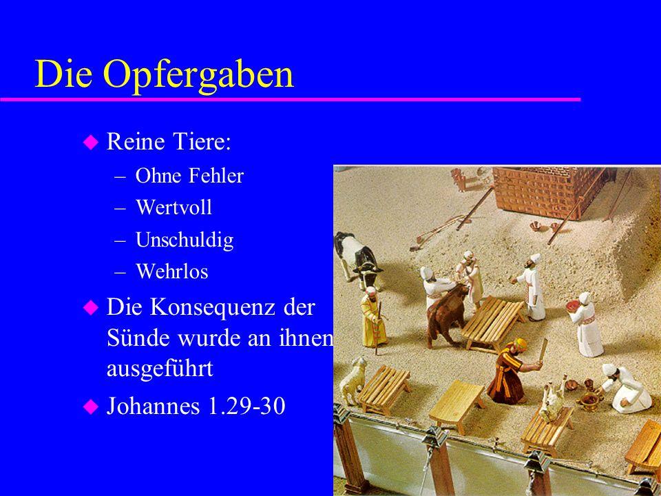 Die Opfergaben Reine Tiere: –Ohne Fehler –Wertvoll –Unschuldig –Wehrlos Die Konsequenz der Sünde wurde an ihnen ausgeführt Johannes 1.29-30