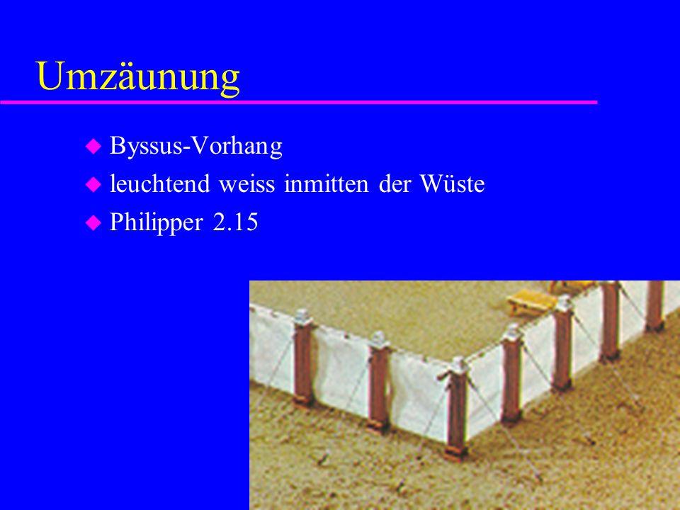 Umzäunung Byssus-Vorhang leuchtend weiss inmitten der Wüste Philipper 2.15
