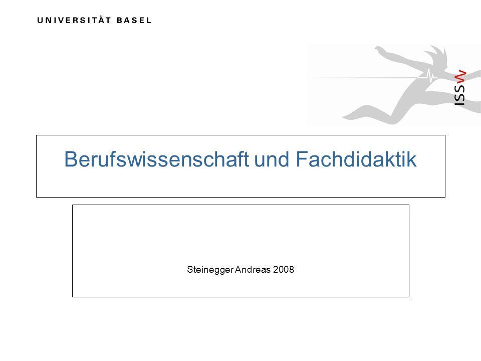 Berufswissenschaft und Fachdidaktik Steinegger Andreas 2008