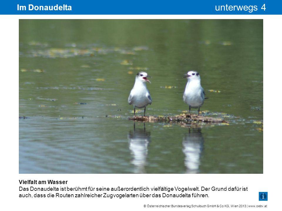 © Österreichischer Bundesverlag Schulbuch GmbH & Co KG, Wien 2013 | www.oebv.at unterwegs 4 Im Donaudelta Vielfalt am Wasser Das Donaudelta ist berühm