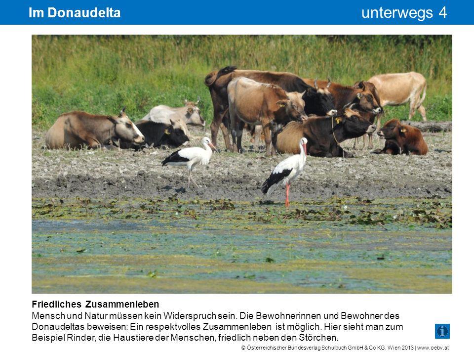 © Österreichischer Bundesverlag Schulbuch GmbH & Co KG, Wien 2013 | www.oebv.at unterwegs 4 Im Donaudelta Friedliches Zusammenleben Mensch und Natur m