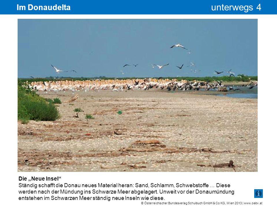 © Österreichischer Bundesverlag Schulbuch GmbH & Co KG, Wien 2013 | www.oebv.at unterwegs 4 Im Donaudelta Pelikane beim Sonnen Früher wurden Pelikane von Fischern verfolgt, weil sie Angst hatten, dass ihnen die Vögel zu viele Fische wegfressen.