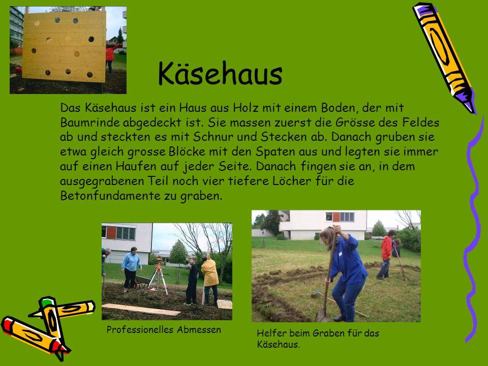 Balancierbalken Gruppe Nagy beim Graben der Löcher der Stützen.