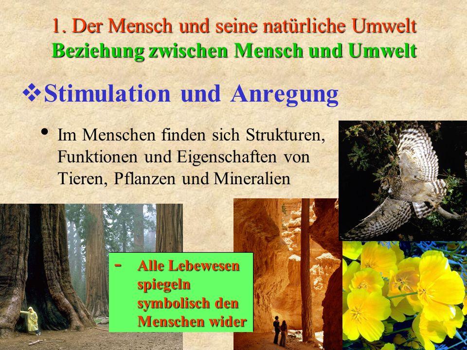 1. Der Mensch und seine natürliche Umwelt Beziehung zwischen Mensch und Umwelt Stimulation und Anregung Im Menschen finden sich Strukturen, Funktionen