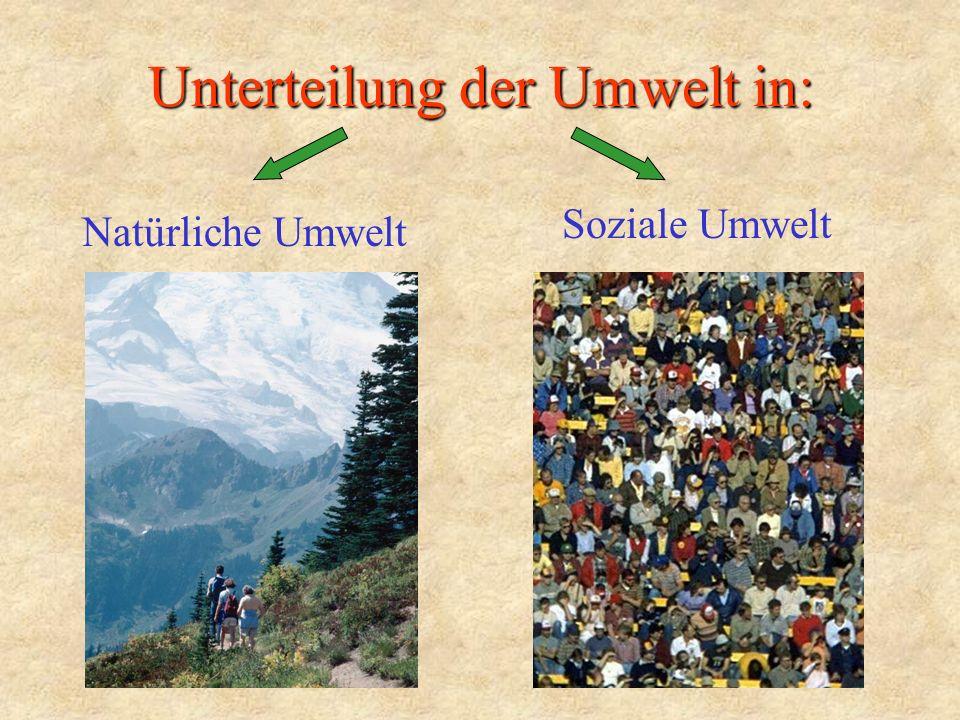 Unterteilung der Umwelt in: Natürliche Umwelt Soziale Umwelt