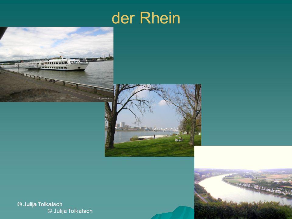 der Rhein © Julija Tolkatsch
