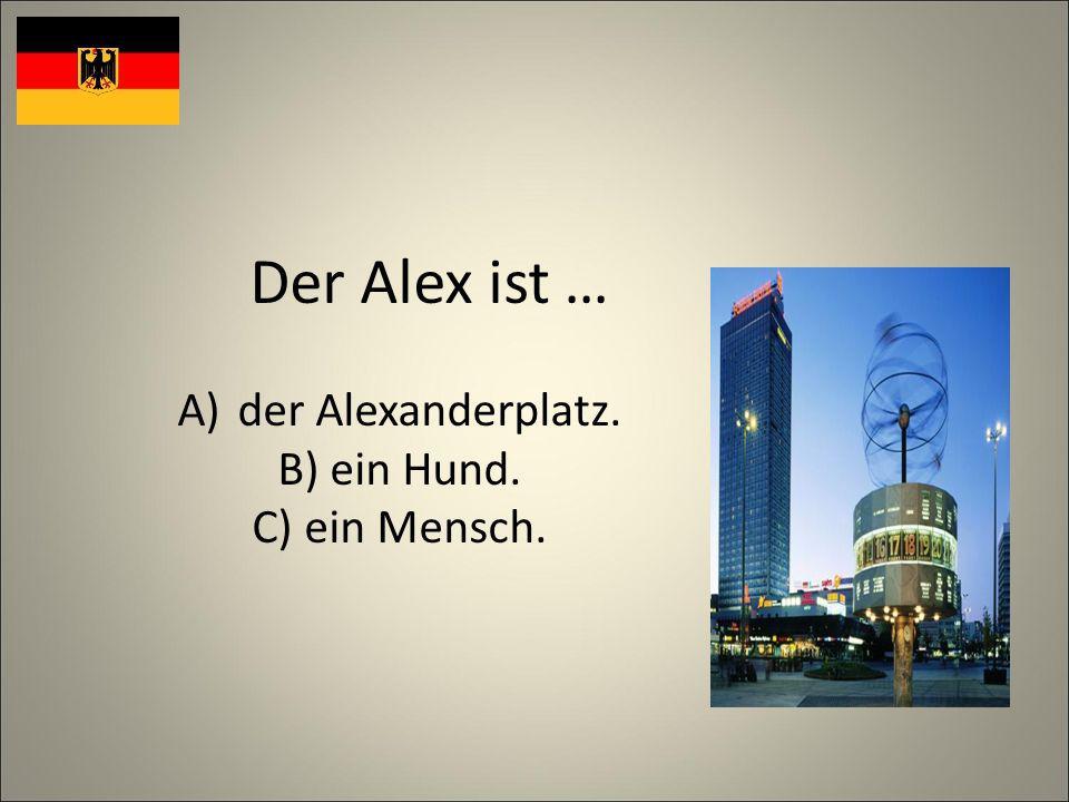 Der Alex ist … A)der Alexanderplatz. B) ein Hund. C) ein Mensch.