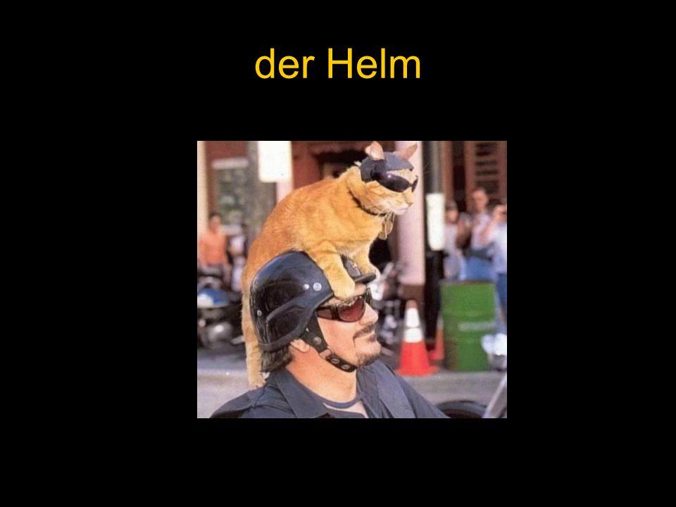 der Helm