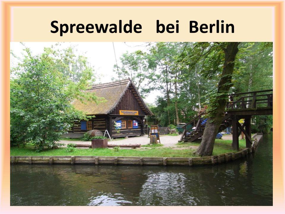 Spreewalde bei Berlin