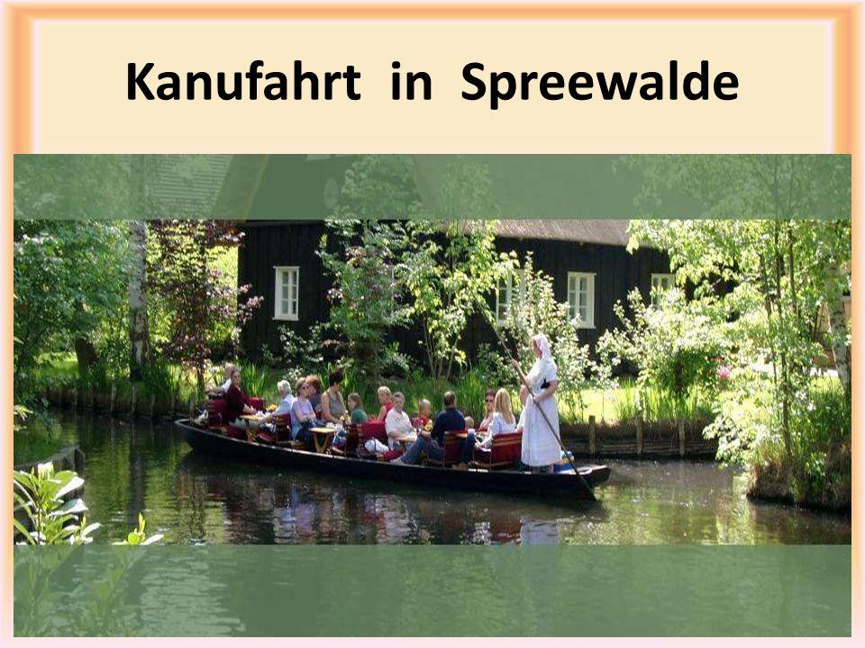 Kanufahrt in Spreewalde
