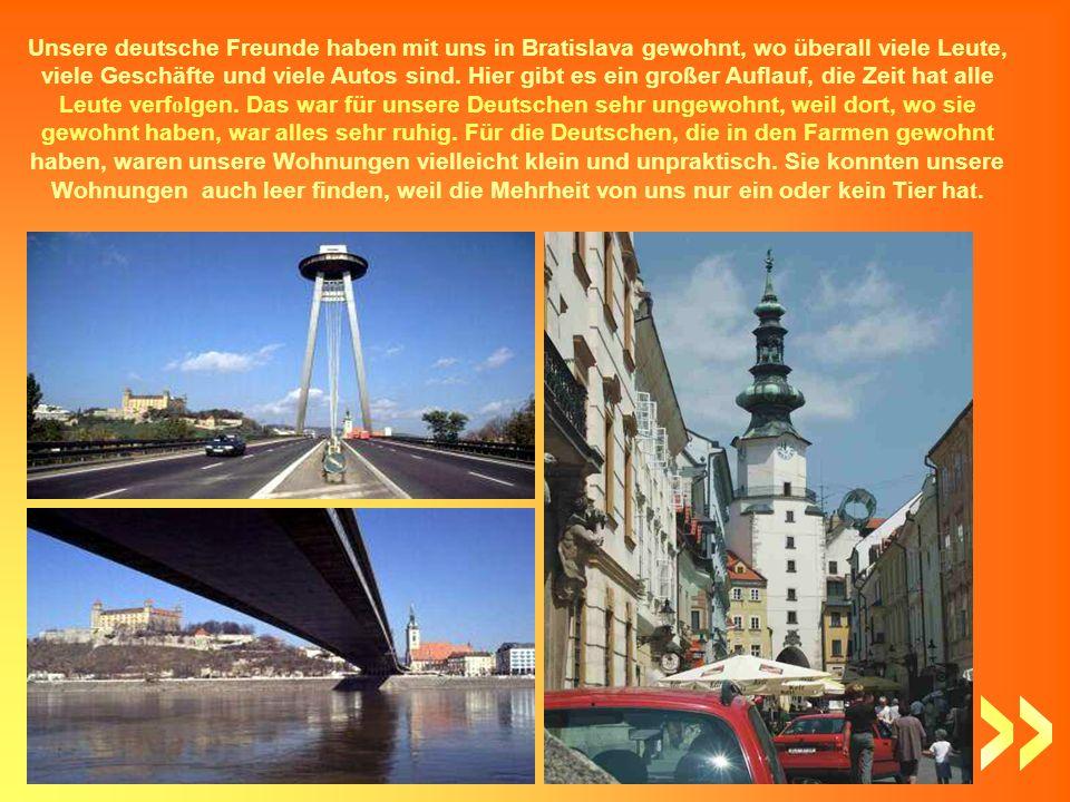 Unsere deutsche Freunde haben mit uns in Bratislava gewohnt, wo überall viele Leute, viele Geschäfte und viele Autos sind.
