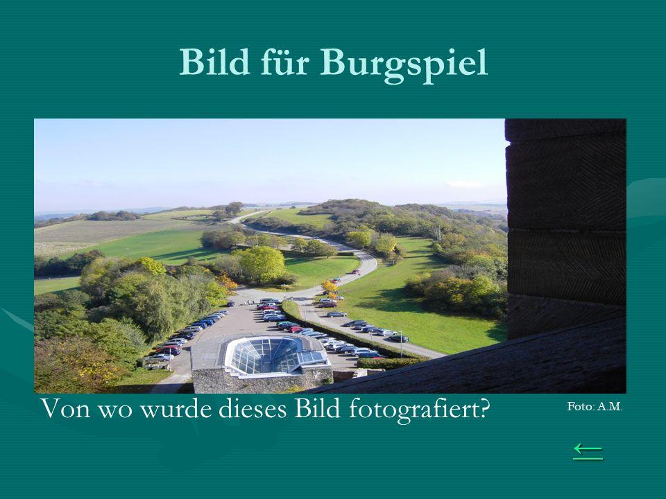 Bild für Burgspiel Von wo wurde dieses Bild fotografiert Foto: A.M.