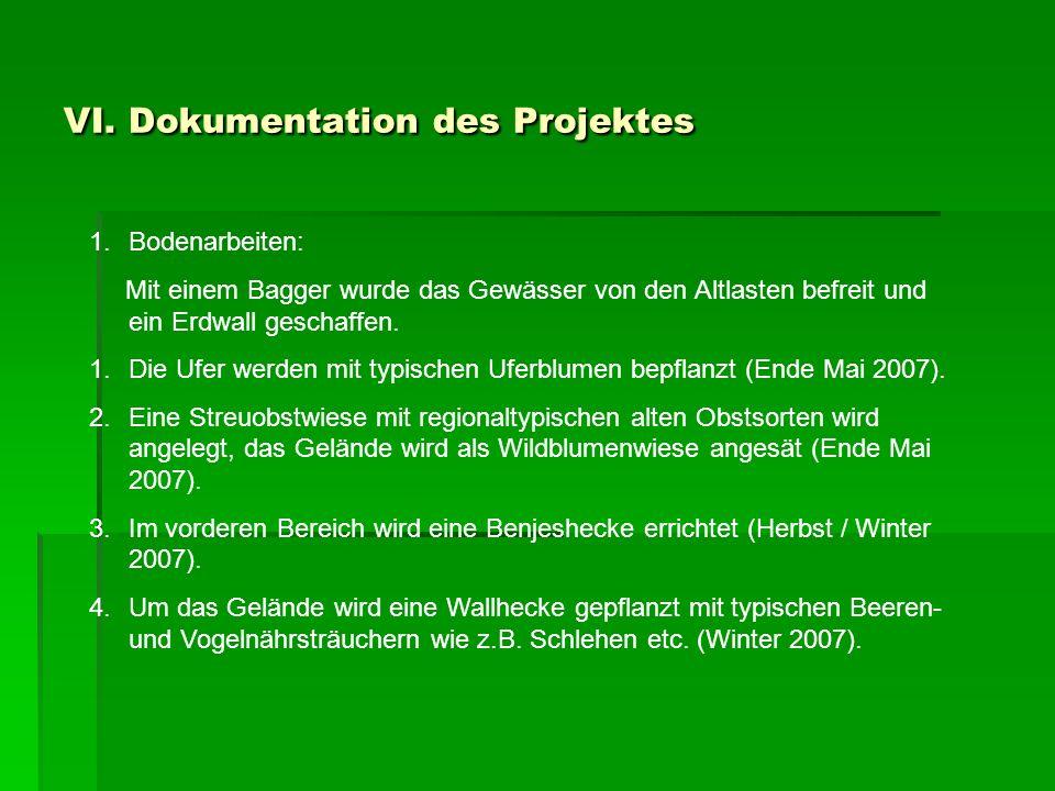 VI. Dokumentation des Projektes 1.Bodenarbeiten: Mit einem Bagger wurde das Gewässer von den Altlasten befreit und ein Erdwall geschaffen. 1.Die Ufer