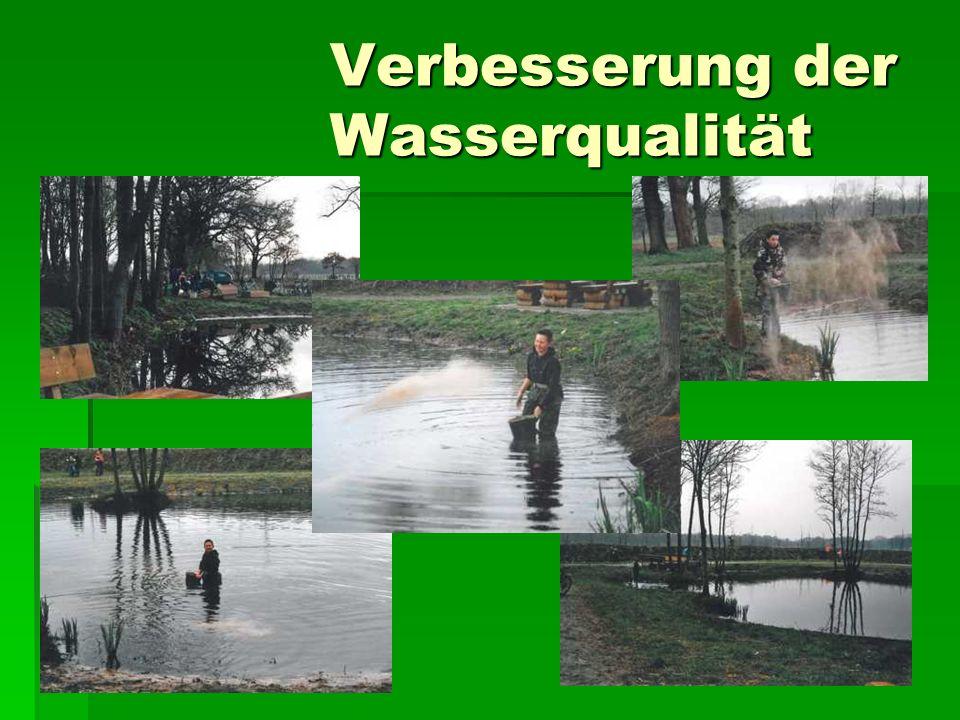 Verbesserung der Wasserqualität