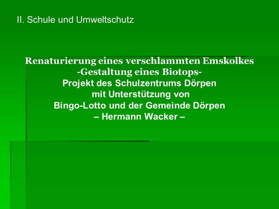 A.1)Lage des Biotops: Emswiesen Dörpen, sog. Uppel 2)Lage geographisch: vergl.