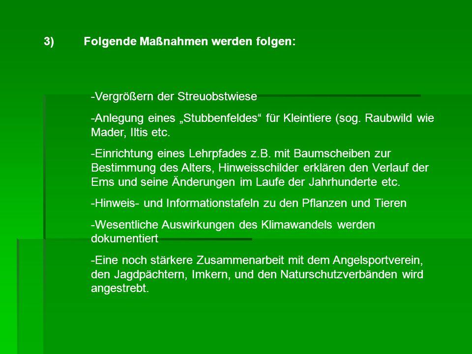 3) Folgende Maßnahmen werden folgen: -Vergrößern der Streuobstwiese -Anlegung eines Stubbenfeldes für Kleintiere (sog.