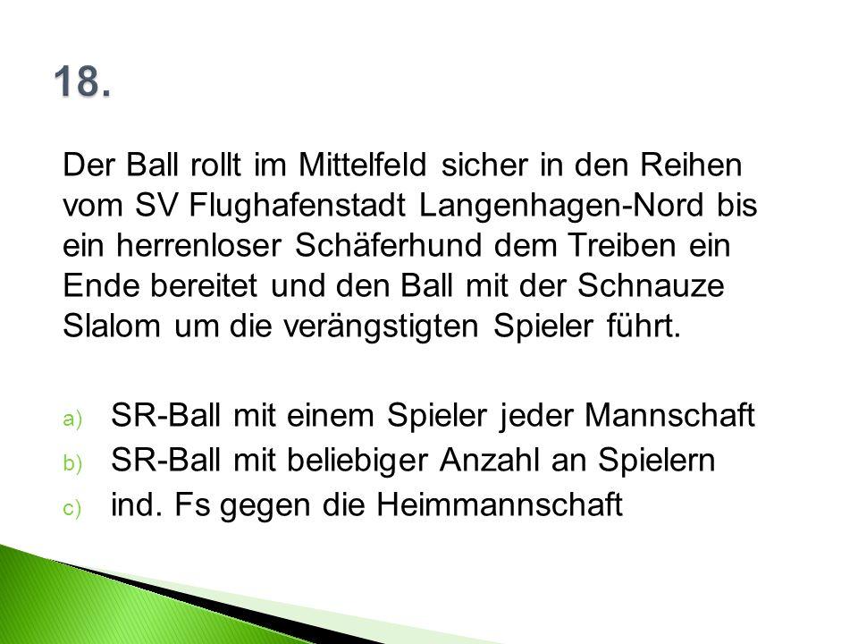 Der Ball rollt im Mittelfeld sicher in den Reihen vom SV Flughafenstadt Langenhagen-Nord bis ein herrenloser Schäferhund dem Treiben ein Ende bereitet und den Ball mit der Schnauze Slalom um die verängstigten Spieler führt.