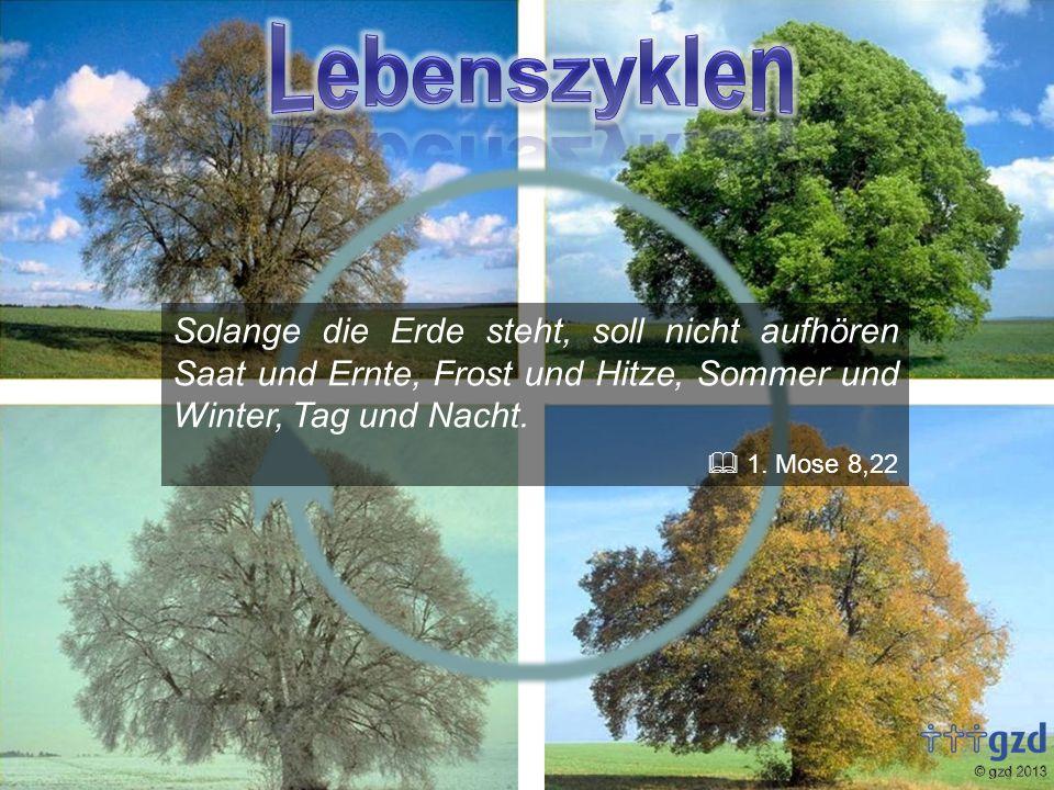 Solange die Erde steht, soll nicht aufhören Saat und Ernte, Frost und Hitze, Sommer und Winter, Tag und Nacht. 1. Mose 8,22