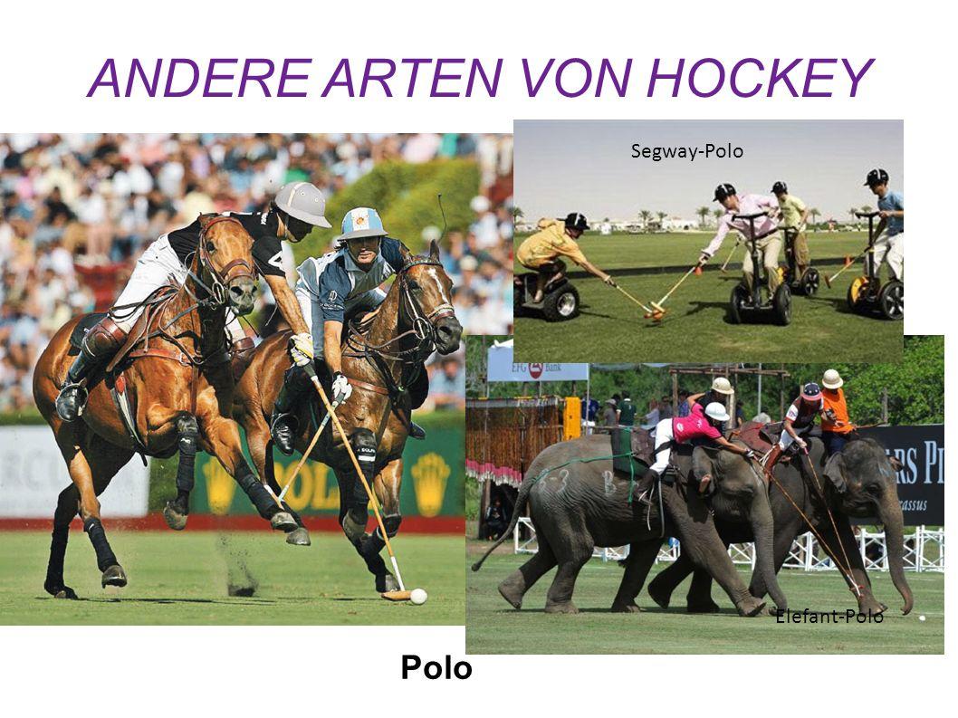 ANDERE ARTEN VON HOCKEY Polo Elefant-Polo Segway-Polo