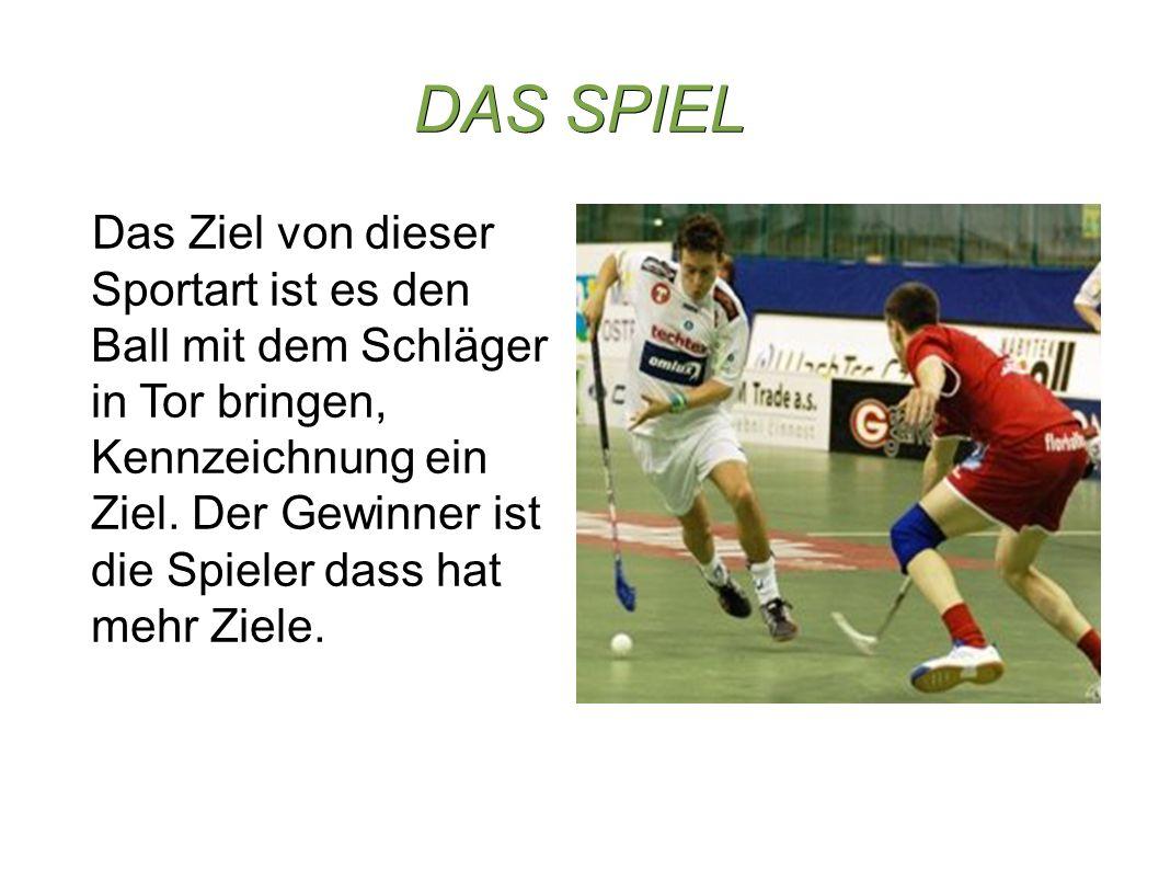 DAS SPIEL Das Ziel von dieser Sportart ist es den Ball mit dem Schläger in Tor bringen, Kennzeichnung ein Ziel.