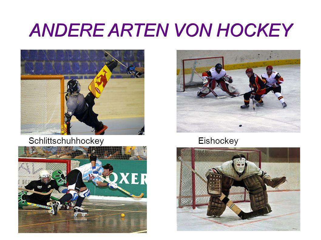ANDERE ARTEN VON HOCKEY EishockeySchlittschuhhockey