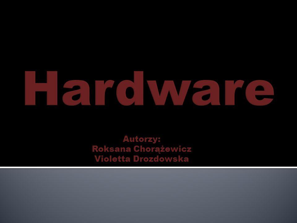 Hardware sind zum Beispiel: Der Computer Der Laptop Der Monitor Der Modem Der SkanerDer DruckerDie Tastatür Die Maus Das HandyiPod Der Lautsprecher Die Kamera Der Kamera Der Prozessor Die Speicherkarte