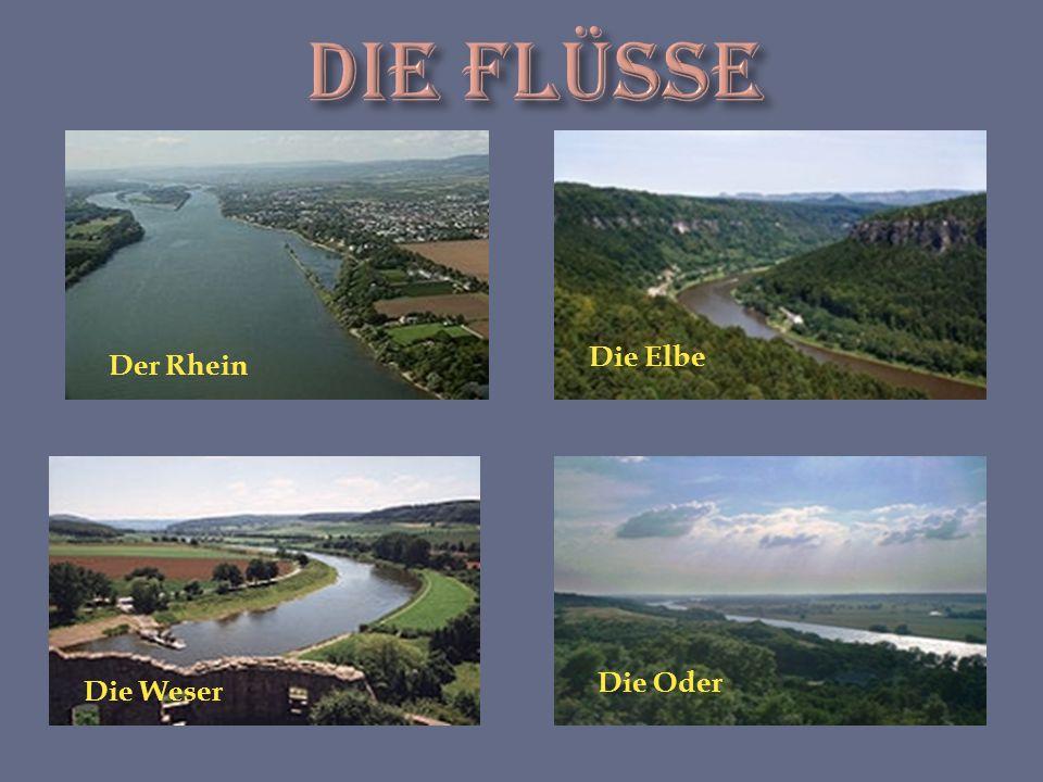 Der Rhein Die Elbe Die Weser Die Oder