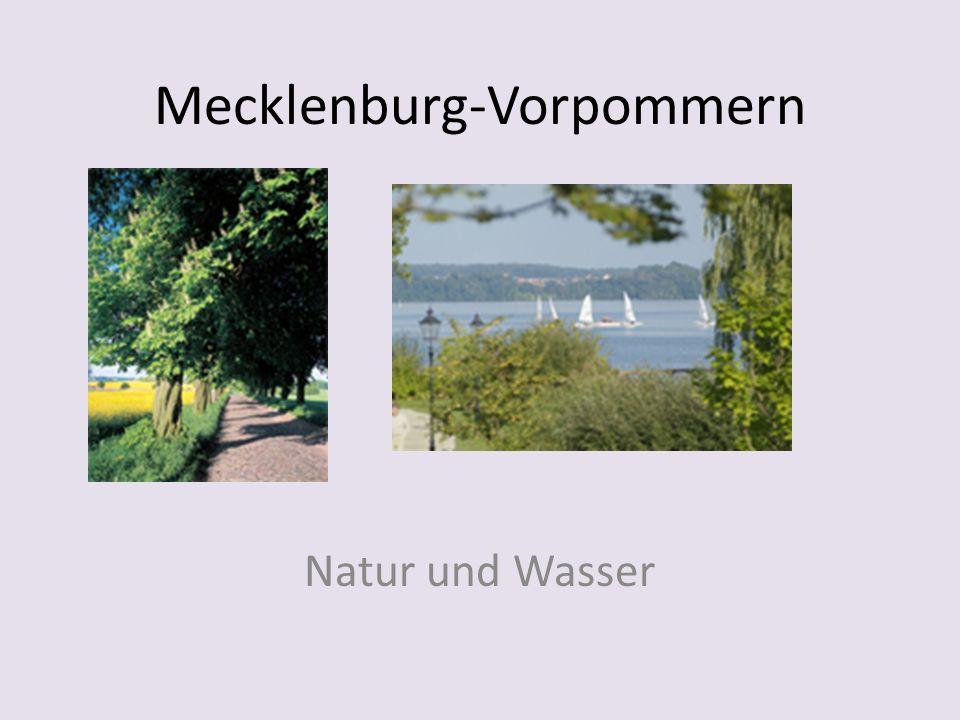 Baden-Württemberg Das Schloss in Heidelberg; eine Kuckucksuhr; der Schwarzwald