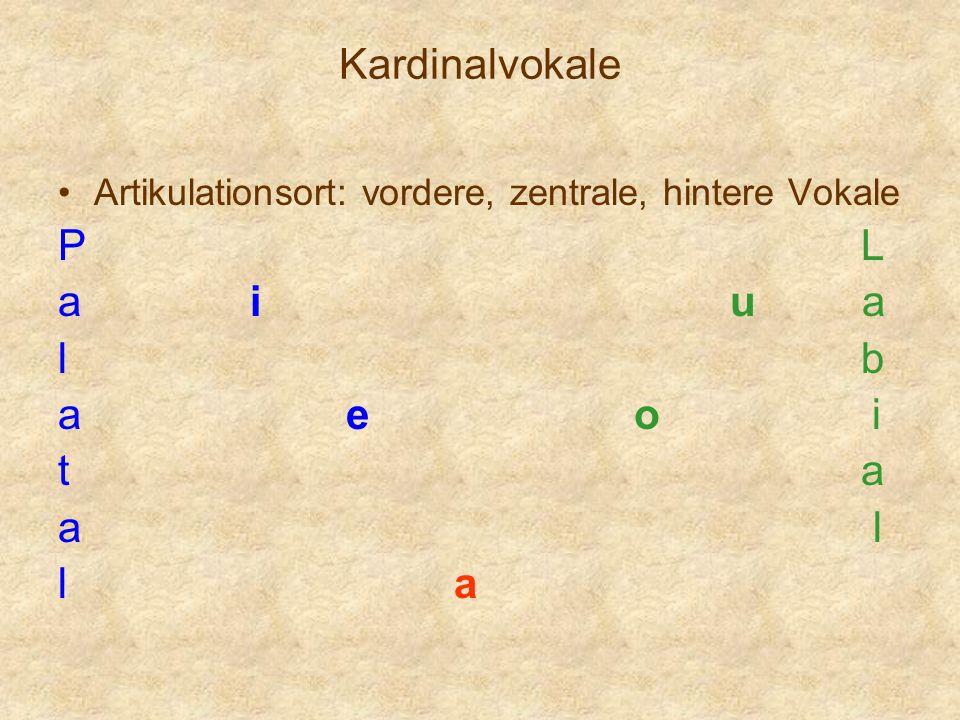 Kardinalvokale Artikulationsort: vordere, zentrale, hintere Vokale P L aiu a l b aeo i t a a l l a