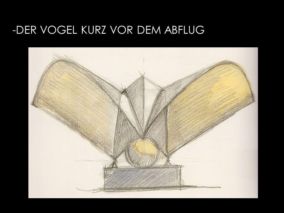 -DER VOGEL KURZ VOR DEM ABFLUG