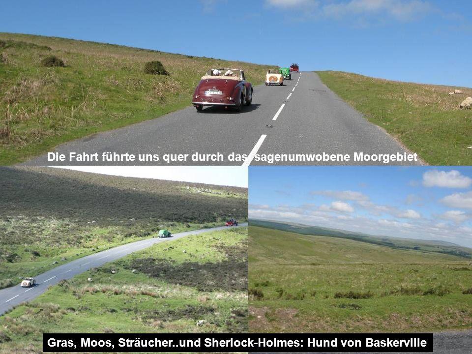 Die Fahrt führte uns quer durch das sagenumwobene Moorgebiet Gras, Moos, Sträucher..und Sherlock-Holmes: Hund von Baskerville