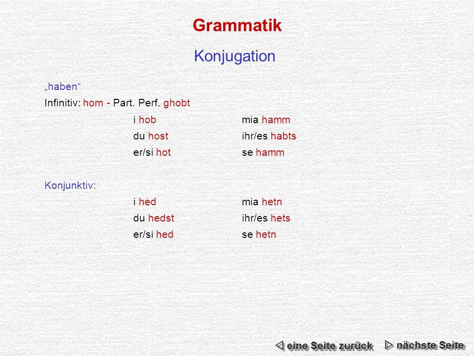 Grammatik Konjugation haben Infinitiv: hom - Part.