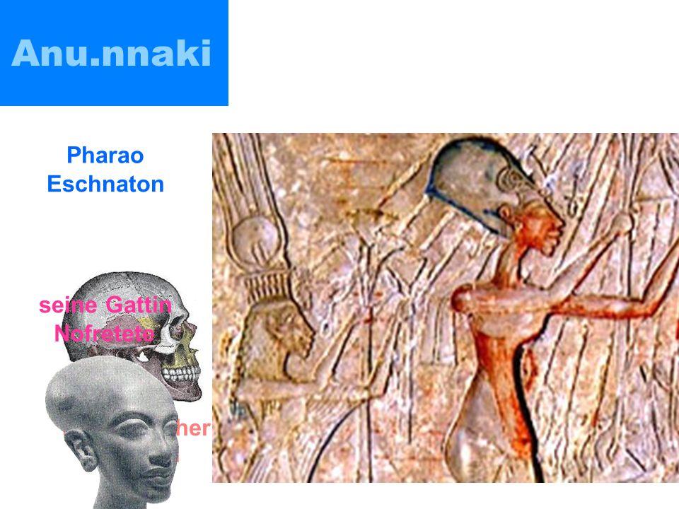 Anu.nnaki im Museum von Ica (Peru) wurde in Bolivien gefunden menschlicher Schädel Pharao Eschnaton seine Gattin Nofretete