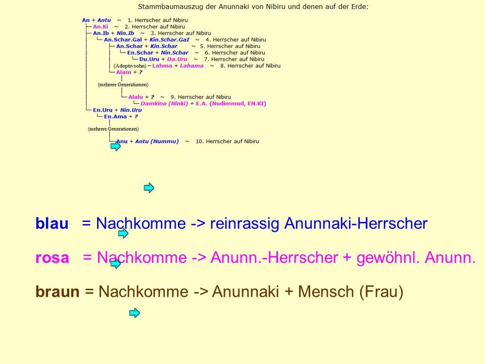 blau = Nachkomme -> reinrassig Anunnaki-Herrscher rosa = Nachkomme -> Anunn.-Herrscher + gewöhnl.