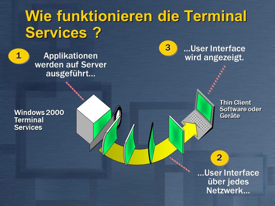 Thin Client Software oder Geräte Windows 2000 Terminal Services Applikationen werden auf Server ausgeführt... 11...User Interface über jedes Netzwerk.