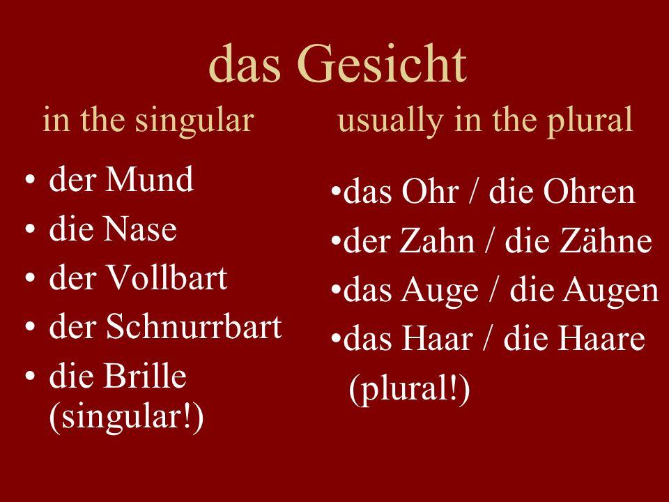 das Gesicht in the singular usually in the plural der Mund die Nase der Vollbart der Schnurrbart die Brille (singular!) das Ohr / die Ohren der Zahn /