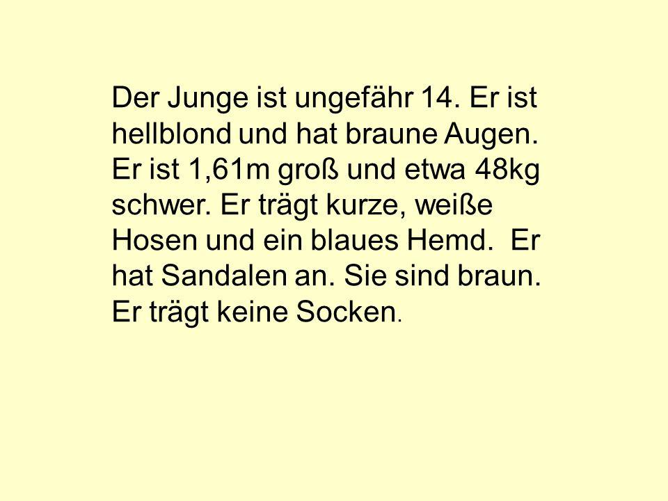 Der Junge ist ungefähr 14. Er ist hellblond und hat braune Augen. Er ist 1,61m groß und etwa 48kg schwer. Er trägt kurze, weiße Hosen und ein blaues H