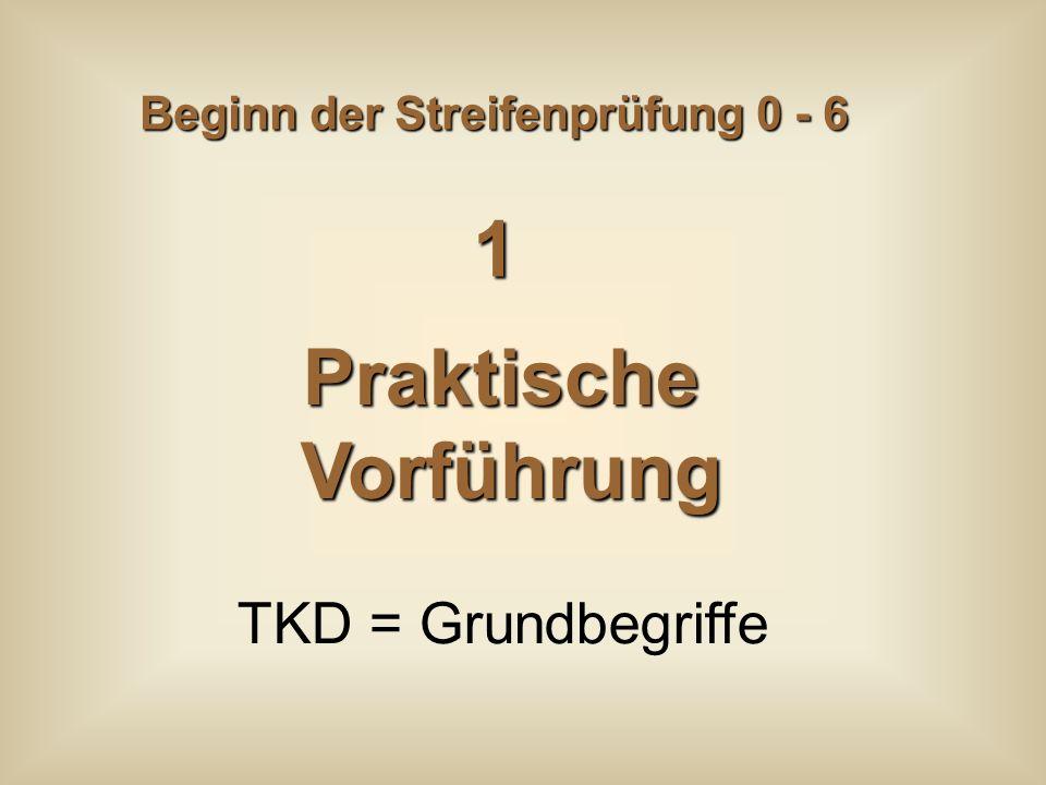 Beginn der Streifenprüfung 0 - 6 PraktischeVorführung TKD = Grundbegriffe 1