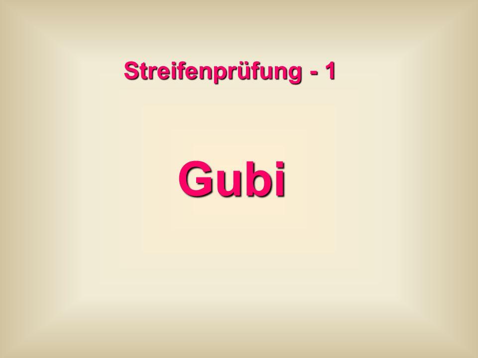 Streifenprüfung - 1 Gubi