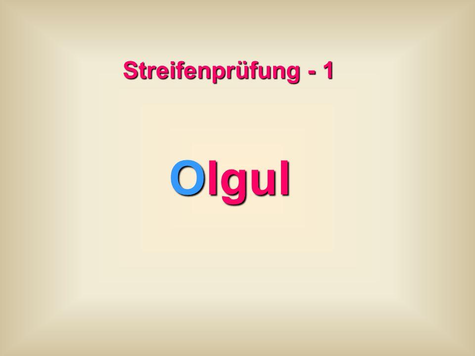 Streifenprüfung - 1 Olgul