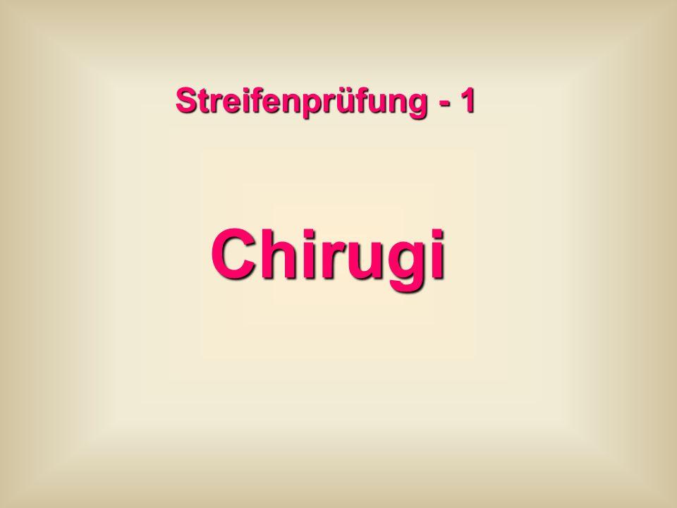 Streifenprüfung - 1 Chirugi