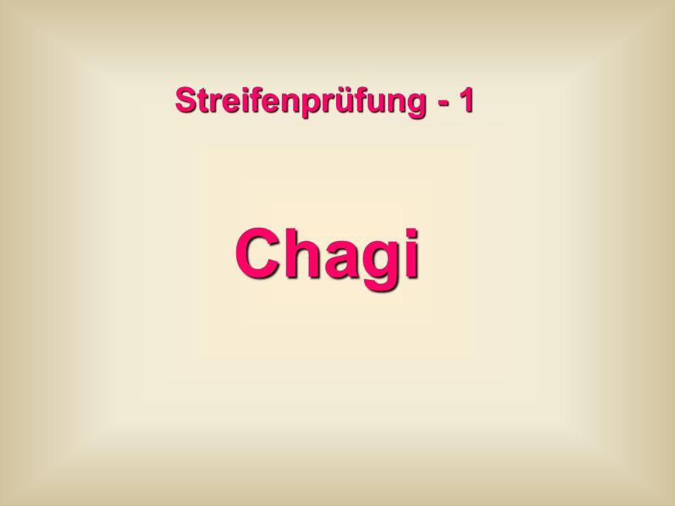 Streifenprüfung - 1 Chagi