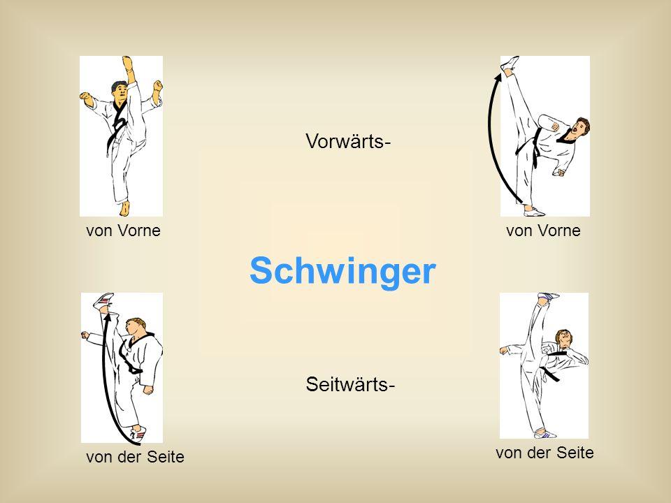 Schwinger Vorwärts- Seitwärts- von Vorne von der Seite