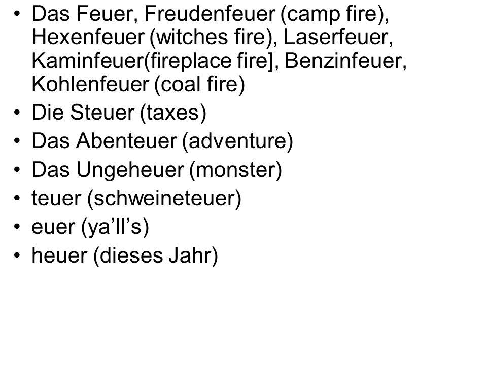 Das Feuer, Freudenfeuer (camp fire), Hexenfeuer (witches fire), Laserfeuer, Kaminfeuer(fireplace fire], Benzinfeuer, Kohlenfeuer (coal fire) Die Steuer (taxes) Das Abenteuer (adventure) Das Ungeheuer (monster) teuer (schweineteuer) euer (yalls) heuer (dieses Jahr)