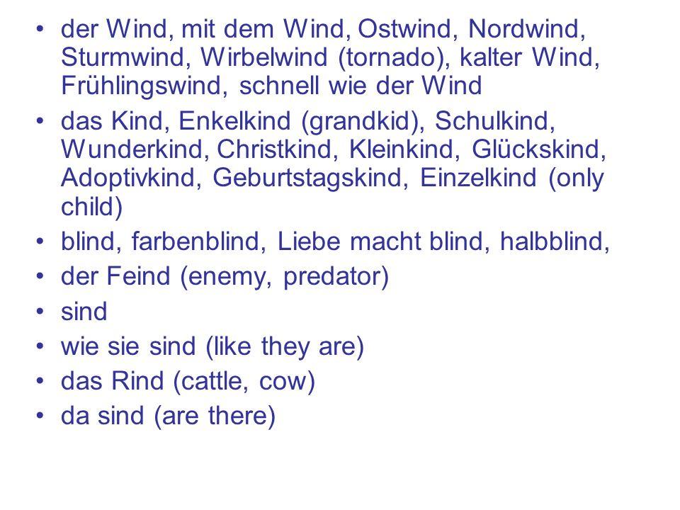 der Wind, mit dem Wind, Ostwind, Nordwind, Sturmwind, Wirbelwind (tornado), kalter Wind, Frühlingswind, schnell wie der Wind das Kind, Enkelkind (grandkid), Schulkind, Wunderkind, Christkind, Kleinkind, Glückskind, Adoptivkind, Geburtstagskind, Einzelkind (only child) blind, farbenblind, Liebe macht blind, halbblind, der Feind (enemy, predator) sind wie sie sind (like they are) das Rind (cattle, cow) da sind (are there)